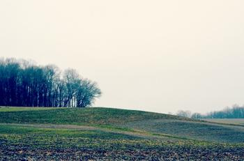 Rolling Land