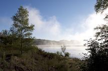 Lifting Fog by Amelia Kanan