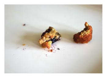 Crumbs from a Blueberry Muffin