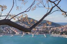 Adriatic Sea by Amelia Kanan