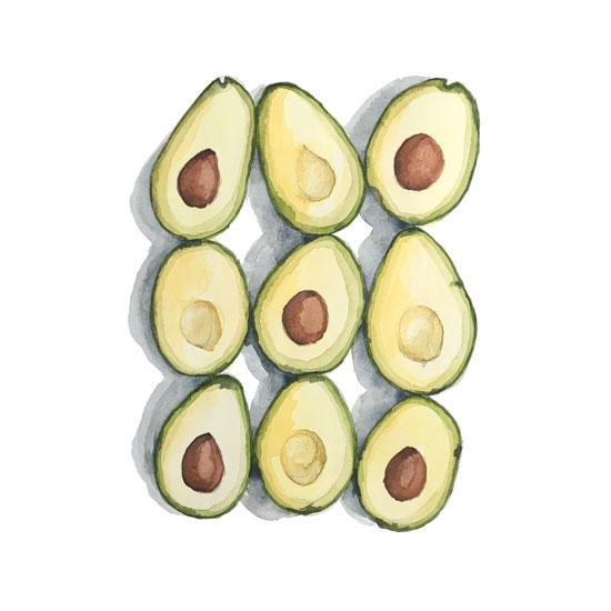 art prints - Avocado Series by Christina Oertel