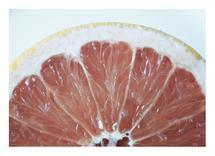 Grapefruit by Amy Stevenson Wilson