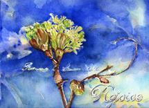 """""""Rejoice"""" by Debra Stevenson"""