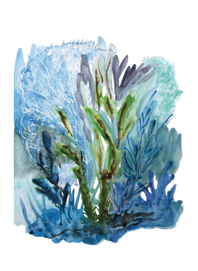 art prints - Sea Floral by CaroleeXpressions