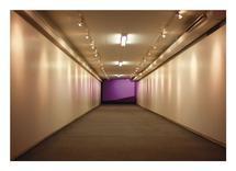 Purple Room Next by Nicole Winn