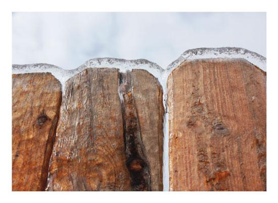 art prints - Popsicle Fence by Nicole Winn