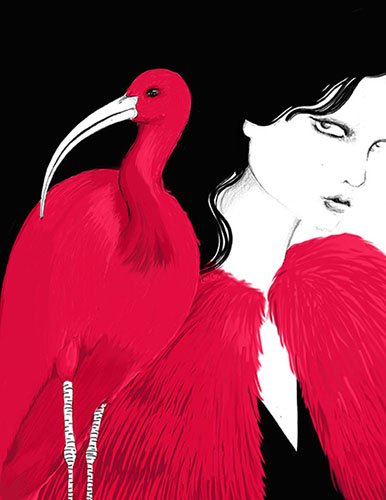 art prints - Scarlet Ibis by Lina Che