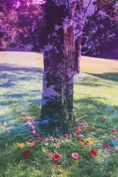 Floral Tree Love