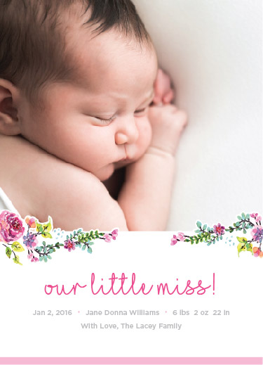 birth announcements - Simple Floral Script by Sam Dircks