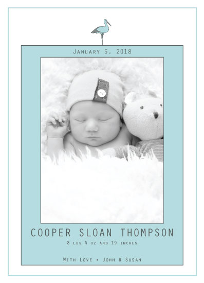birth announcements - Modern Classic Stork by Julie Miles