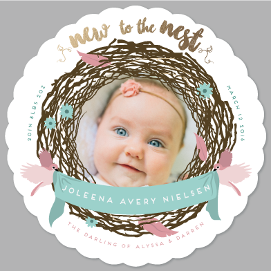 birth announcements - New to the Nest by Avian by Design