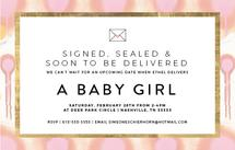 Signed, Sealed Baby Gir... by Simeone and Shierhorn