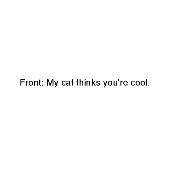 greeting card - Cool Cat by Nibby Press