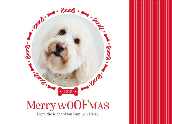 holiday photo cards - Merry Woofmas! by Alicia Tosky