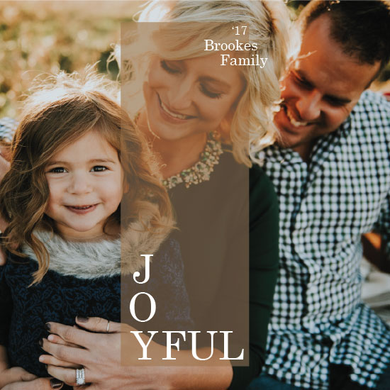 holiday photo cards - Joyful Moments by Alicia Tosky