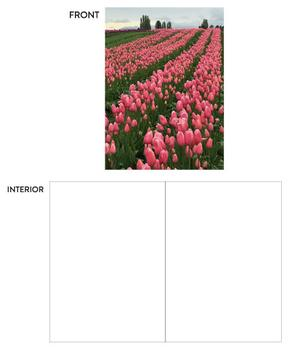 Country Tulips