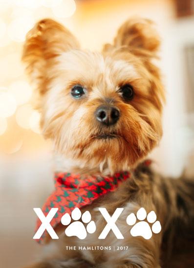 holiday photo cards - XOXO by Roxy Cervantes