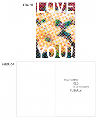 greeting card - clearly flowers by lulablu