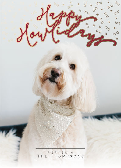 holiday photo cards - Happy Howlidays by Mabe Design Co.