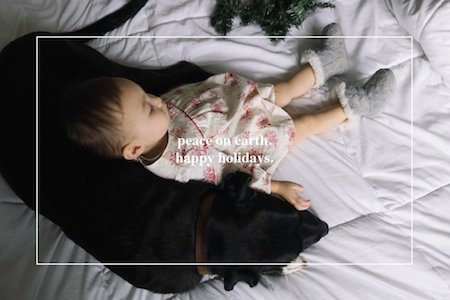 holiday photo cards - MargeandJack by Jen Schachtebeck