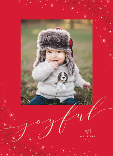 holiday photo cards - Holiday Delight by Jennifer Postorino