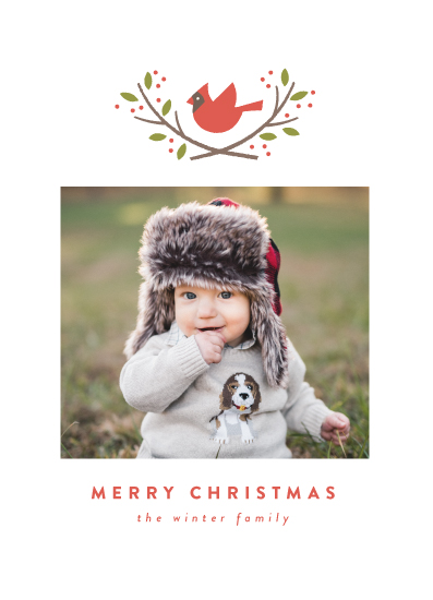 holiday photo cards - cardinal crest by Susan Asbill