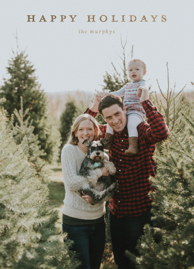 holiday photo cards - simply holiday greetings by leggs and foster