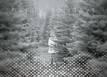 Shining Diamond Holiday by Christy Sawyer