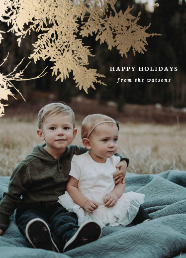 holiday photo cards - golden boughs by leggs and foster