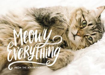 Meowy Everything