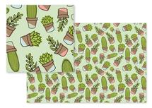 Cacti and Succulents by Jordyn Alison Designs