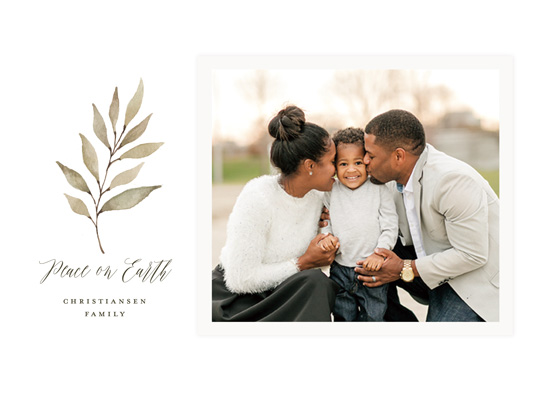 holiday photo cards - Olive Branch Peace by Wildfield Paper Co.