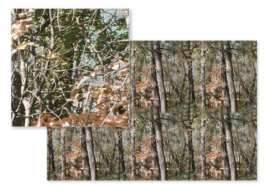 fabric - Real Photo Tree Camo Camouflage Forest by Angela Sullivan
