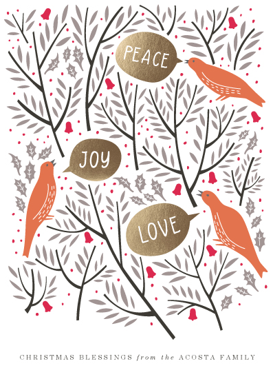 non-photo holiday cards - Bird Greeting by Eve Schultz