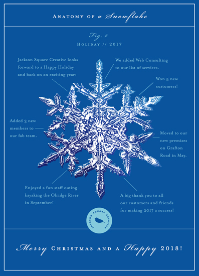 non-photo holiday cards - Anatomy of a Snowflake by Eva Marion