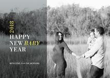 Happy New Baby Year by Katie Ann Sundquist