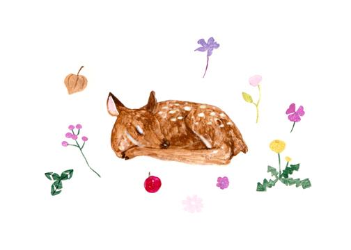 art prints - Sleeping Fawn by Riley Choi