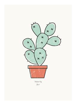 Cactus figure 1