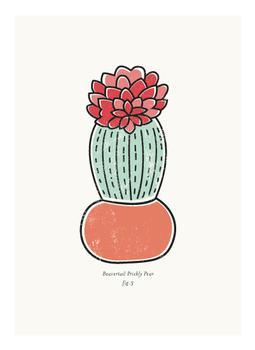 Cactus figure 3