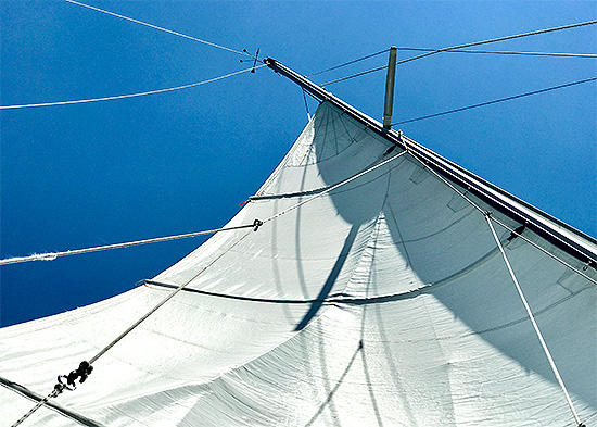 art prints - Sails Annapolis by Lauren Rose Jackson