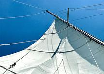 Sails Annapolis by Lauren Rose Jackson