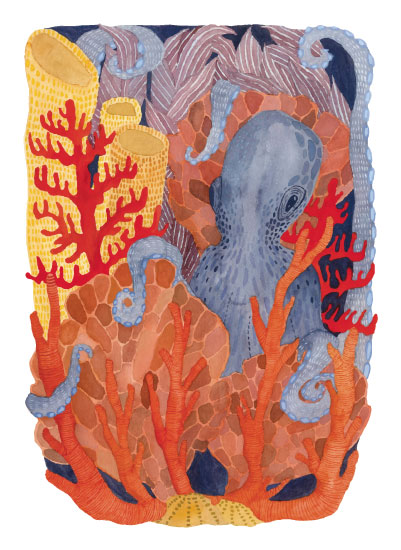art prints - The Coral Gardener by Megan Murrell