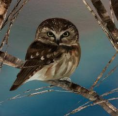 art prints - Saw Whet Owl by Laura Blue Palmer