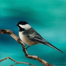 Black Capped Chickadee by Laura Blue Palmer