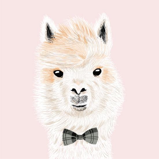 art prints - Baby Llama by iamtanya