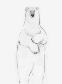 Hey Bear