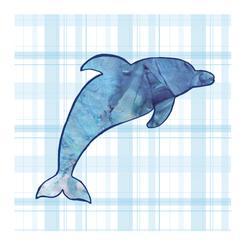 Denim Dolphin