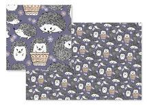 Hedgehogs for Kids by Anna Hirsch