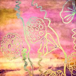Lotus Doodle 4