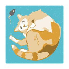 Hello Furry Friend!